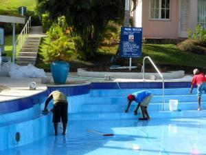 swimming pool cleaners